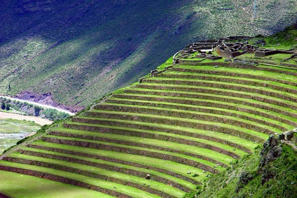 Incredible Terrace Fields (1)