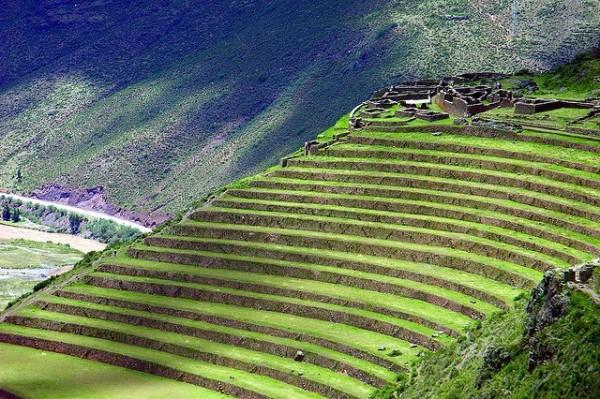 Incredible Terrace Fields (1)